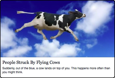 flyingcow_about.jpg